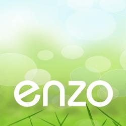 enzo250